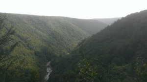 Canyon at Blackwater Falls State Park