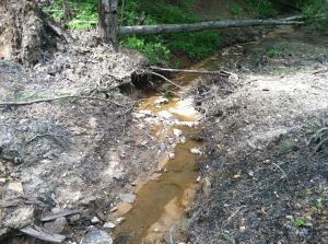Failed Erosion Control Photo by Autumn Bryson