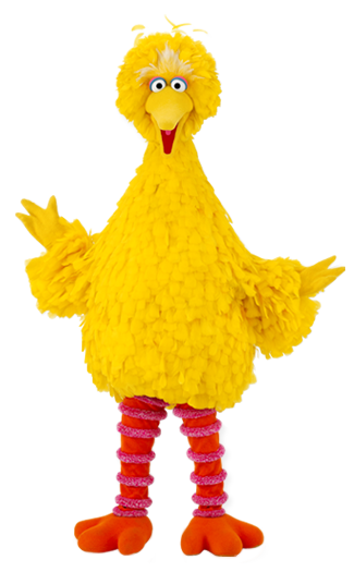 Bigbirdnewversion
