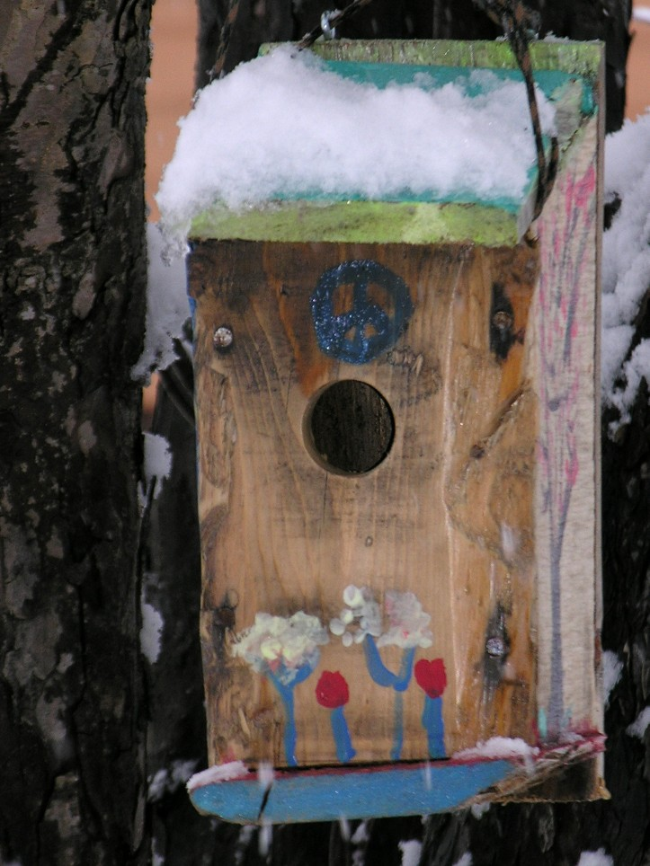Bird House [peace] in snow