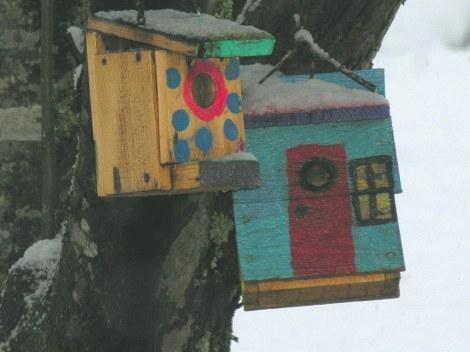 Bird Houses 3