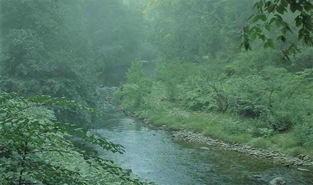 5 Harpers Creek