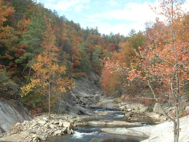 Wilson Creek 4 [Gorge]
